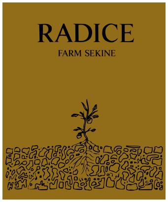 RADICE とは?